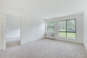 bright carpeted living room with large windows